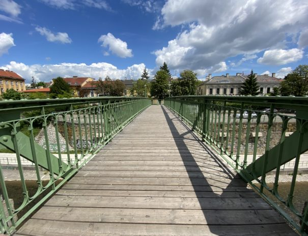 Hietzing footbridge over Wien River seen during the guided tour / tour with the tour guides of Austria Guides by Future