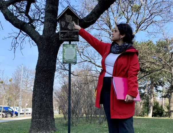 Stopp vor dem Insektenhotel im Schweizergarten bei der Tour / Führung mit den Fremdenführern von Austria Guides For Future
